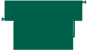 carnet-lyonnais-logo-vert-308x175-baseline-centre